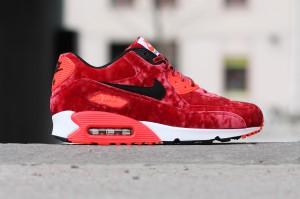 Nike_Air_Max_90_Anniversary_725235-600